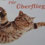 Katzenpost