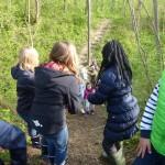 fischereiverein: Tümpel