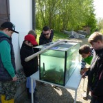 fischereiverein 051