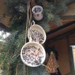 Vogelfutter in Sammlertasse